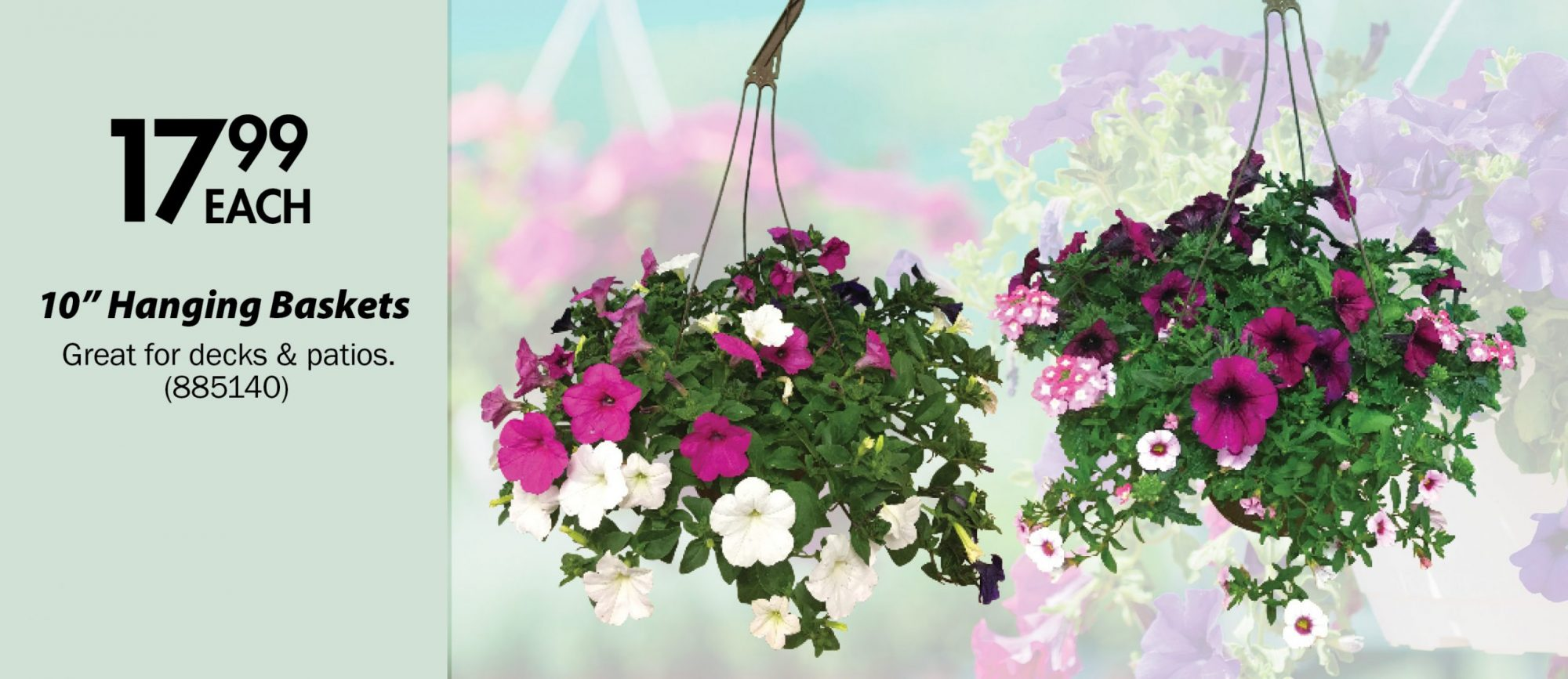 "$17.99 each. 10"" Hanging Baskets Great for decks & patios. (885140)"